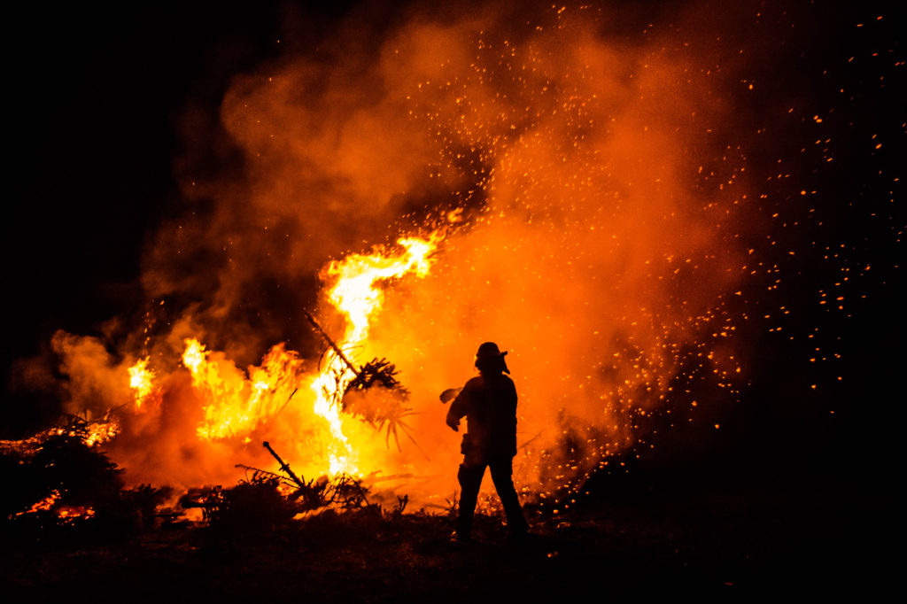 Burning the x-mas-trees